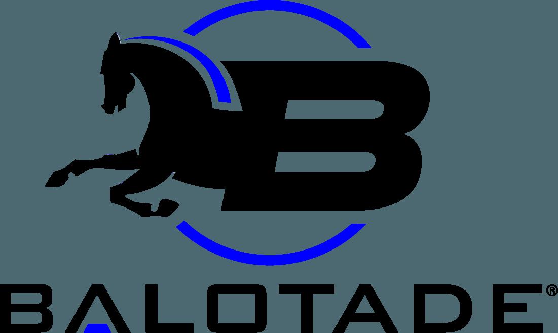 Balotade® Blinkery – klapki na oczy do ogłowia sportowego