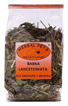 herbal-pets-babka-lancetowata-kroliki-gryzonie