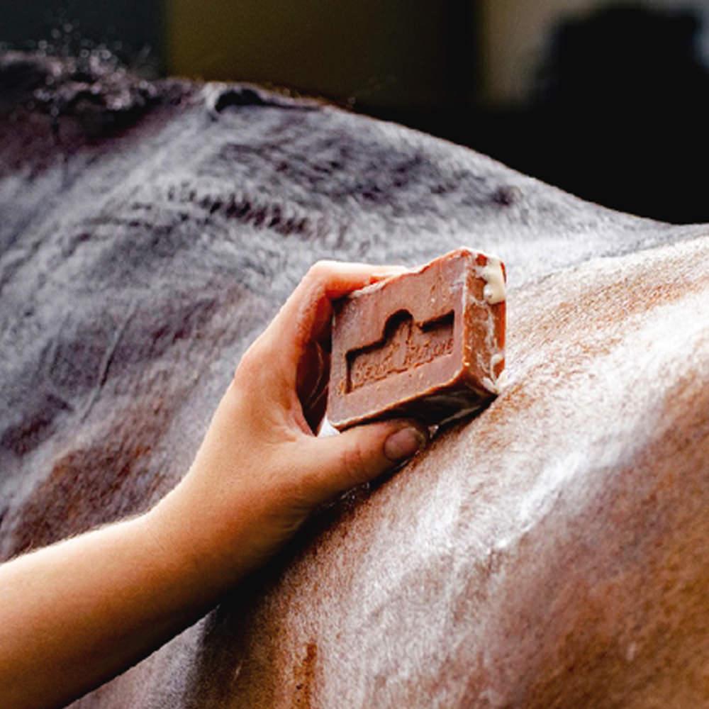 Preparaty do pielęgnacji koni i sprzętu