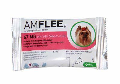 AMFLEE Spot On