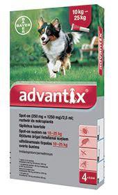 Bayer Advantix krople dla psów od 10 do 25 kg przeciw kleszczom, pchłom i komarom